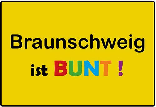 Landesmuseen-Aktion Braunschweig ist bunt Januar 2015
