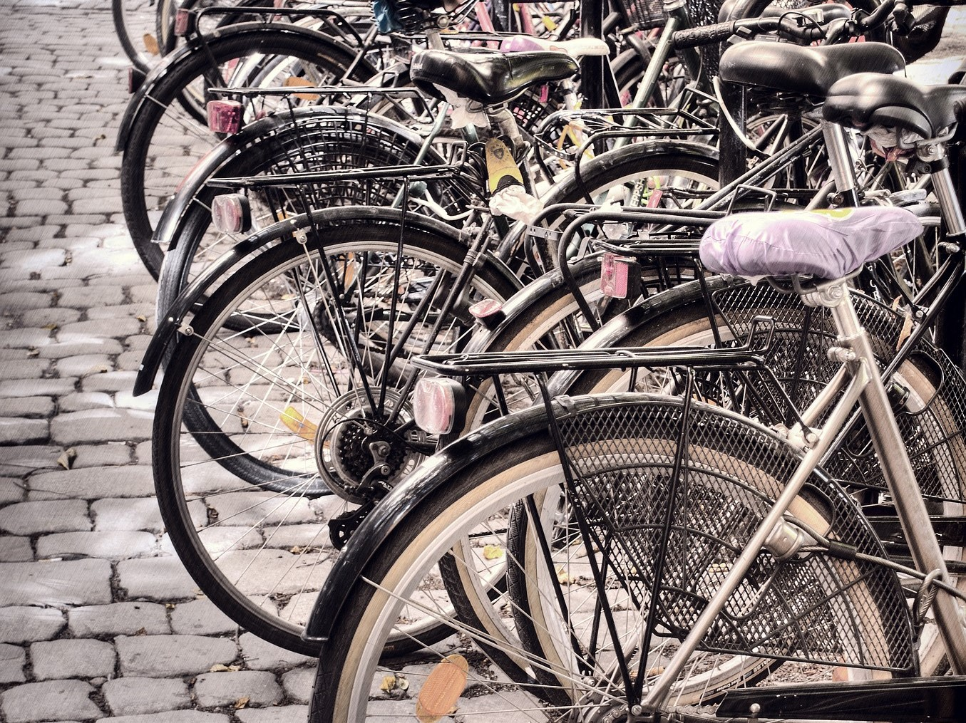 Stadtradeln vom 30.08. bis 19.09.2020: Grüne unterstützen das Team Fahrradstadt Braunschweig